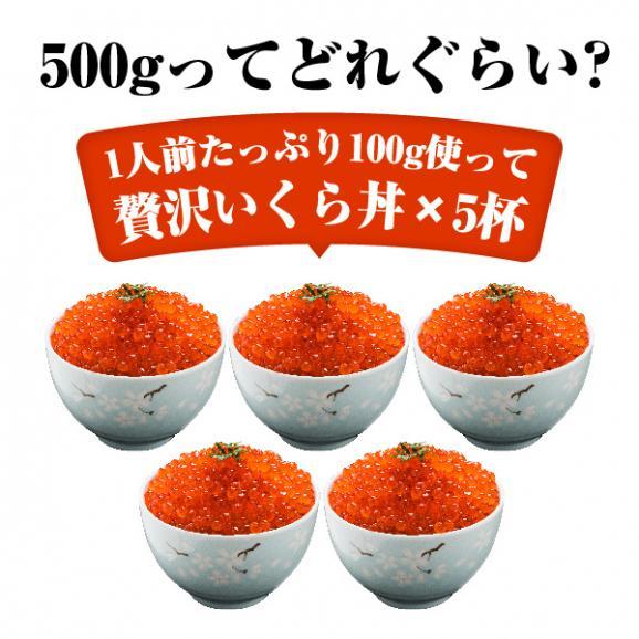 【送料無料】寿司屋のいくら醤油漬け!イクラ醤油漬け500g 05
