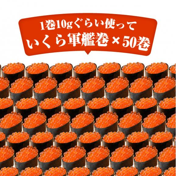 【送料無料】寿司屋のいくら醤油漬け!イクラ醤油漬け500g 06