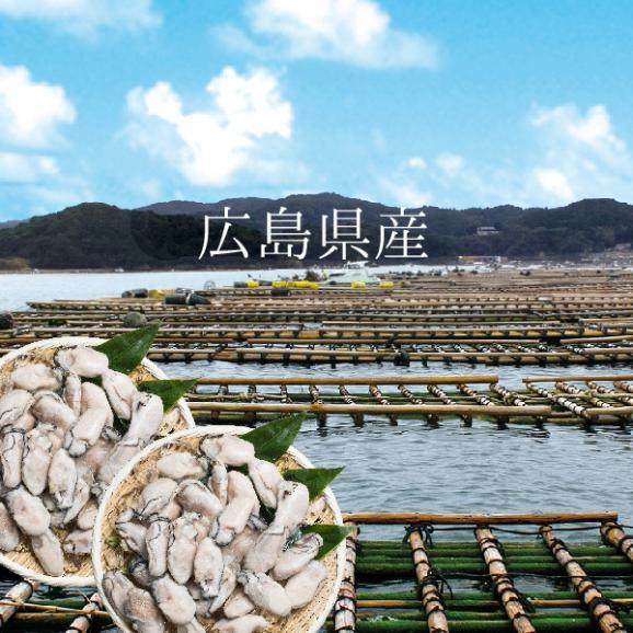 【送料無料】寿司屋が厳選する牡蠣!広島県産カキ2kgMサイズ04