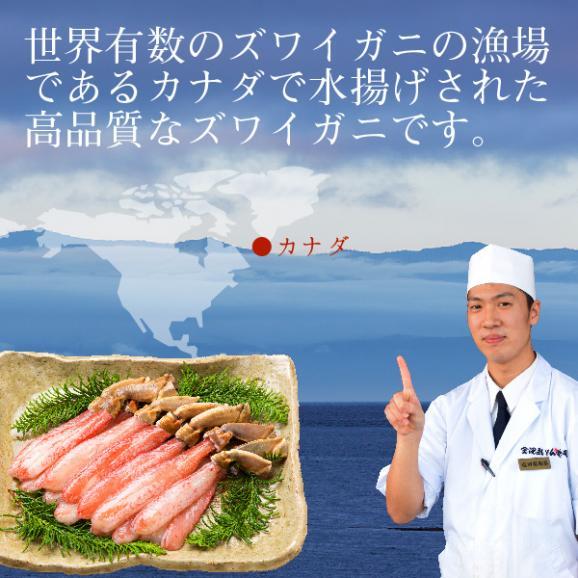 生食可 生ズワイガニ 特大サイズ生ズワイ蟹足しゃぶ1kg(500g×2袋)約38本~43本前後 送料無料03