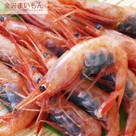 福井県産子持ち甘エビ500g(約25~30尾前後)