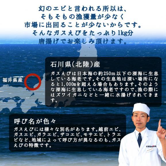 石川県産(北陸産)ガスえび唐揚げ 1kg 03