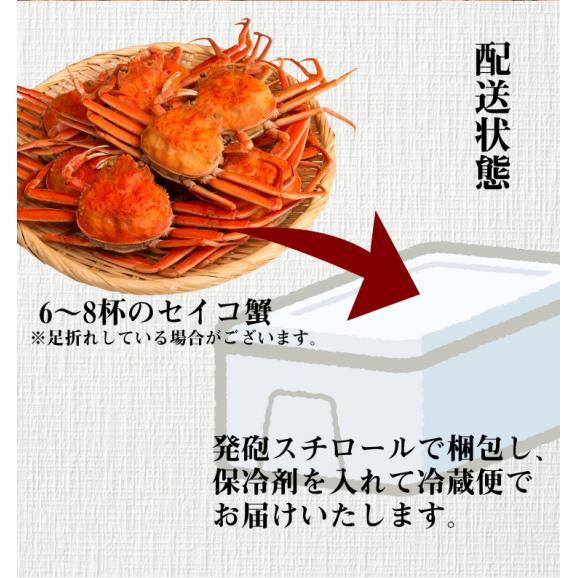 セイコ蟹(香箱蟹) 6~8杯(約1キログラム)/※11/6以降順次発送となります。日時指定は利用いただけません※北海道・沖縄・離島へは別途650円送料が掛かります。05