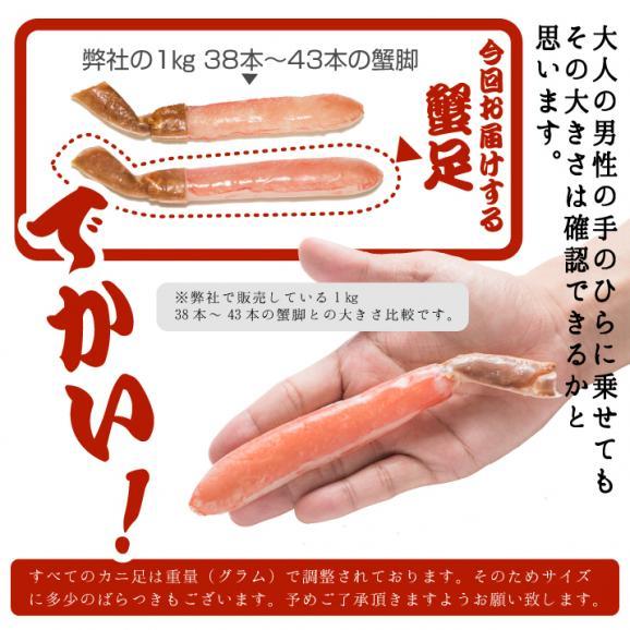 生食可 生ズワイガニ(かに 蟹 カニ ずわいがに) 特大サイズ生ズワイ蟹足しゃぶ1kg(500g×2袋)約28本~33本前後03