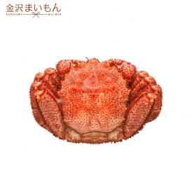 毛ガニ 北海道産毛がに 最高級大サイズ ボイル毛蟹 オホーツク海産 身入り抜群 茹で済 堅蟹 濃厚みそ 最高級 毛蟹1尾 500g