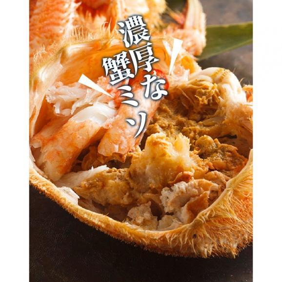 毛ガニ 北海道産毛がに 最高級大サイズ ボイル毛蟹 オホーツク海産 身入り抜群 茹で済 堅蟹 濃厚みそ 最高級 毛蟹1尾 500g04