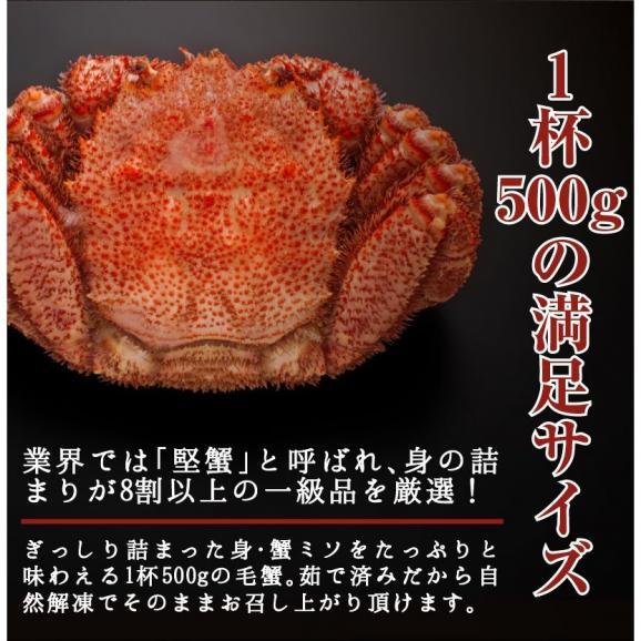毛ガニ 北海道産毛がに 最高級大サイズ ボイル毛蟹 オホーツク海産 身入り抜群 茹で済 堅蟹 濃厚みそ 最高級 毛蟹1尾 500g05