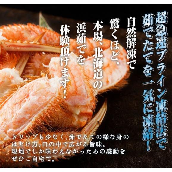 毛ガニ 北海道産毛がに 最高級大サイズ ボイル毛蟹 オホーツク海産 身入り抜群 茹で済 堅蟹 濃厚みそ 最高級 毛蟹1尾 500g06