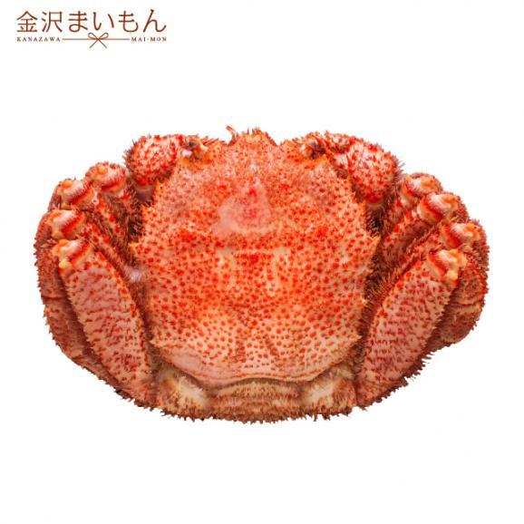 毛ガニ 北海道産毛がに 特大サイズ ボイル毛蟹 オホーツク海産 身入り抜群 茹で済 堅蟹 濃厚みそ 最高級 毛蟹1尾 800g01