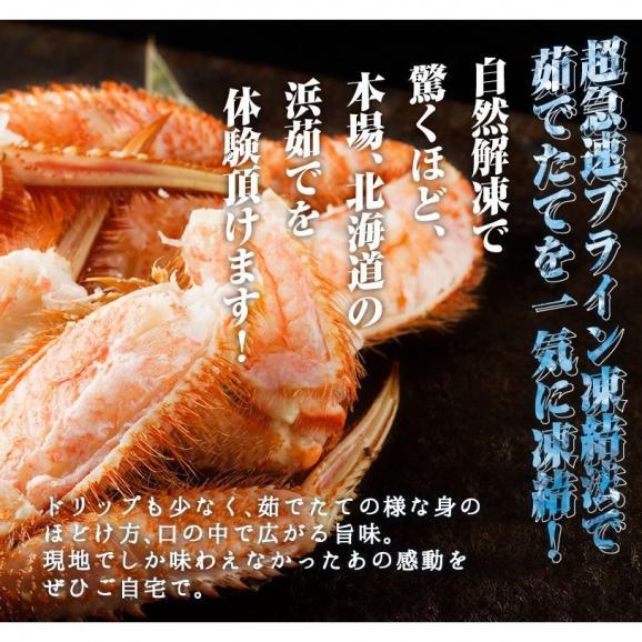 毛ガニ 北海道産毛がに 特大サイズ ボイル毛蟹 オホーツク海産 身入り抜群 茹で済 堅蟹 濃厚みそ 最高級 毛蟹1尾 800g05