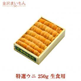 金沢まいもん寿司厳選!特選ウニ 250g 生食用 うに ウニ 雲丹【送料無料】