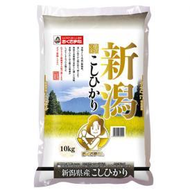 【送料無料】新潟県産こしひかり 10kg