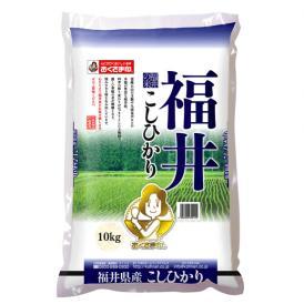 【令和2年産新米】【送料無料】福井県産こしひかり 10kg