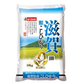 【送料無料】滋賀県産こしひかり 10kg
