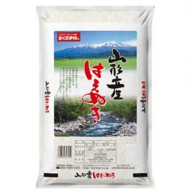 【送料無料】山形県産はえぬき 5kg