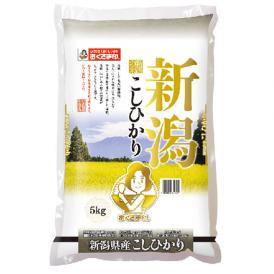 【令和2年産新米】【送料無料】新潟県産こしひかり 5kg
