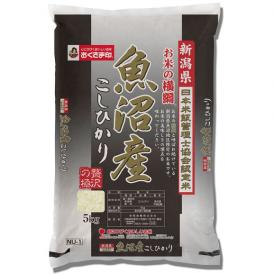 【令和2年産新米】【送料無料】新潟県魚沼産こしひかり 5kg