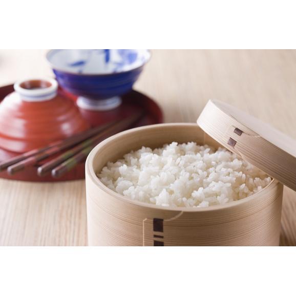 【送料無料】新潟県魚沼産こしひかり 5kg02