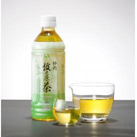 牧之原の雫茶ペットボトル500ml ×24本入