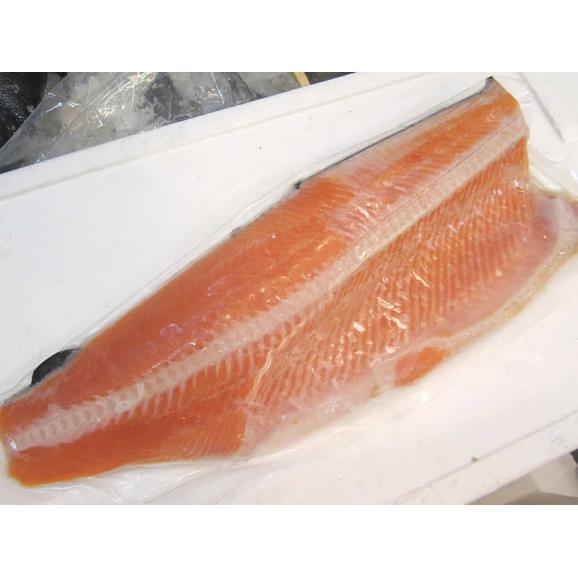 チリ産甘塩銀鮭片身(約1kg)1枚(真空パック)【お遣い物・お礼・ギフトに♪】【特別SALE】【ギンサケ】02