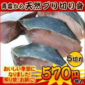【市場価格】青森産 天然ぶりの切り身(5切:カマ、尻尾込) 冷凍 真空パック 天然鰤 ブリ