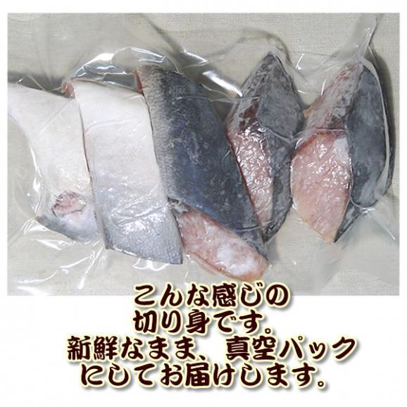 【市場価格】青森産 天然ぶりの切り身(5切:カマ、尻尾込) 冷凍 真空パック 天然鰤 ブリ02