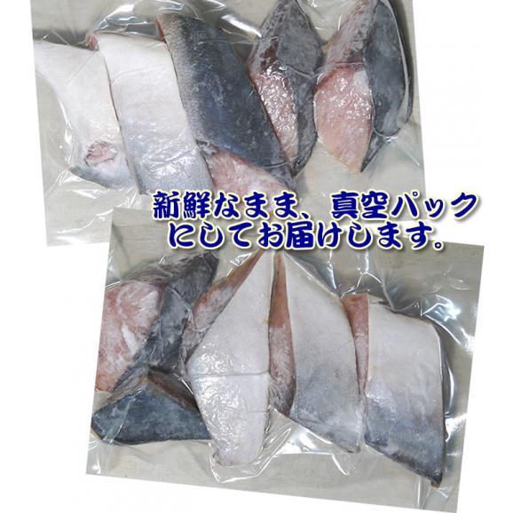 【市場価格】青森産 天然ぶりの切り身(50切)冷凍 真空パック 天然鰤 ブリ02