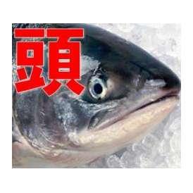 鮭(時しらず)の頭だけ10個入り
