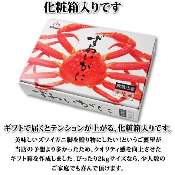 大型 ずわいがに脚 2kg (3Lサイズ)【化粧箱入】【送料無料】 04