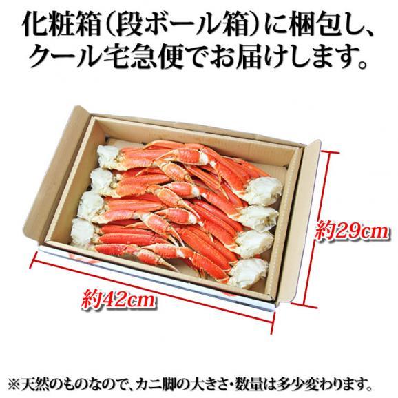大型 ずわいがに脚 2kg (3Lサイズ)【化粧箱入】【送料無料】 05
