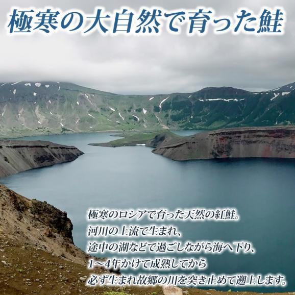 天然サーモン 紅鮭 寒風干し02