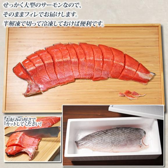天然サーモン 紅鮭 寒風干し05