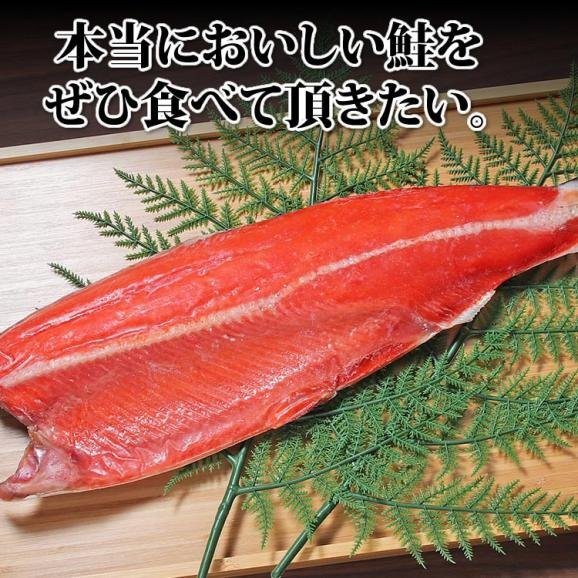 天然サーモン 紅鮭 寒風干し06