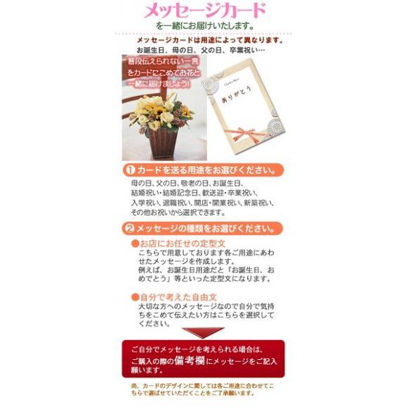 【母の日フラワーギフト】バラ咲ベゴニア鉢植え新品種 ボンボンレモン5号 カゴ付03
