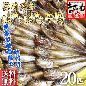[福井県産]ハタハタの干物お徳用20匹入り[はたはた/ハタハタ/鰰/送料無料]