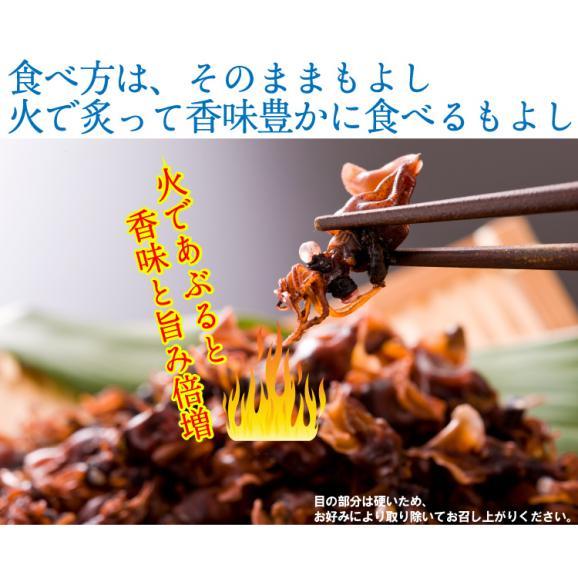 日本海産ほたるいか丸ごと煮干し200g×1袋 生換算1.8kg相当をギュッと濃縮、メガ盛り約180匹前後!【ホタルイカ/蛍烏賊/肴/干物/メール便/送料無料/ますよね】04