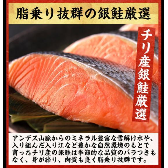 甘塩銀鮭 切り身 8切れ(定塩/約520g)【鮭/さけ/サケ/切身/送料無料/ますよね】02
