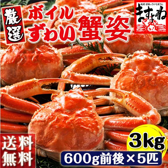 ボイルずわい蟹姿/3kg前後(600g×5尾)[送料無料|あす着対応][ずわいかに/ズワイカニ/ずわい蟹/ズワイ蟹]01