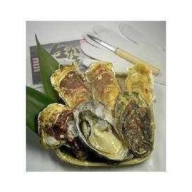 リアスビックワン(宮城三陸産牡蠣 殻付きカキ貝)Lサイズ25個セット+オイスターナイフのセット(3〜4名様にオススメ)