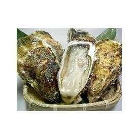 リアスビックワン(宮城三陸産殻付き牡蠣:成熟した二年〜三年牡蠣)特選Lサイズ40個(4名様以上にオススメ)ナイフが付かないリピーター様向けのセットです