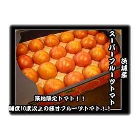【即日出荷可能フルーツトマト】日本一甘いトマト!茨城産スーパーフルーツトマト1ケースセット
