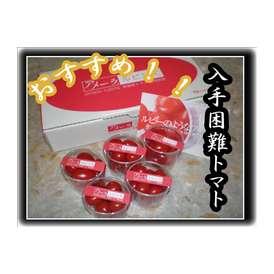 このトマトは甘すぎる!!入手困難!!静岡、長野産アメーラルビンズ10パック1ケースセット!!