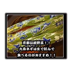小分け一般野菜シリーズ!【京都産九条葱】