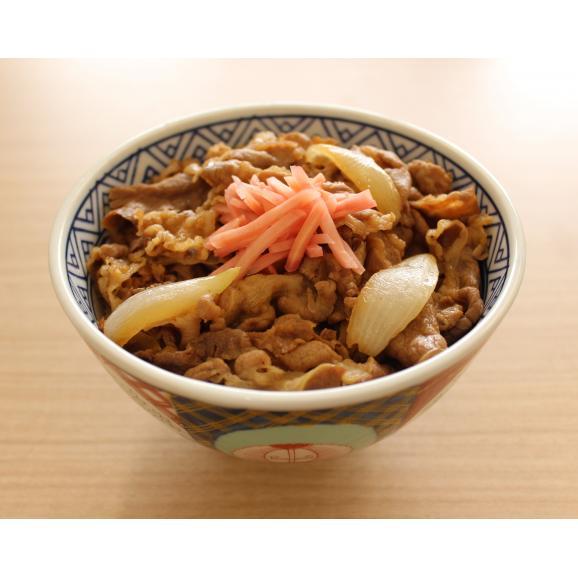 牛丼専門店 三河家監修 冷凍牛丼の具(大)170g×10パック01