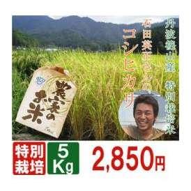 【特別栽培米】コシヒカリ精米5kg★兵庫県丹波篠山産