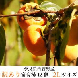 訳あり富有柿2Lサイズ12個! ★奈良西吉野ブランド柿