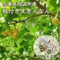 兵庫県 丹波産 殻つき銀杏 400g ぎんなん ギンナン【送料240円】