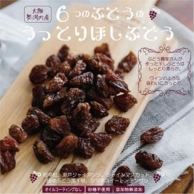 ぶどう農家の自家製 6種類のブドウの干しぶどう 60g×2袋セット