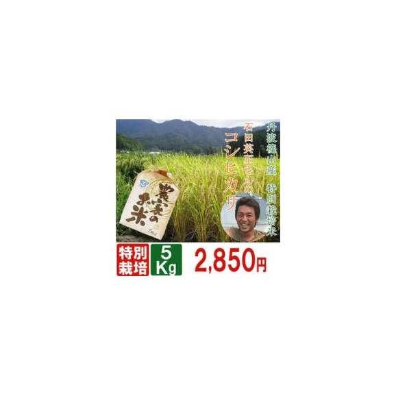 【30年新米予約】【特別栽培米】コシヒカリ精米5kg★兵庫県丹波篠山産01