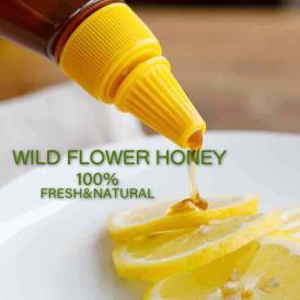 ワイルドフラワーはちみつ 非加熱 花粉除去なし 完熟ハチミツ 百花蜜 蜂蜜 ワイルドフラワーハチミツ チューブ入りハチミツ
